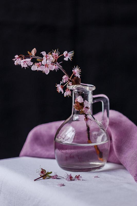 Flor natural de almendro en flor
